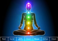 What exactly are Chakras? How do they function? Why are they important to us? How can you work on them? Read more